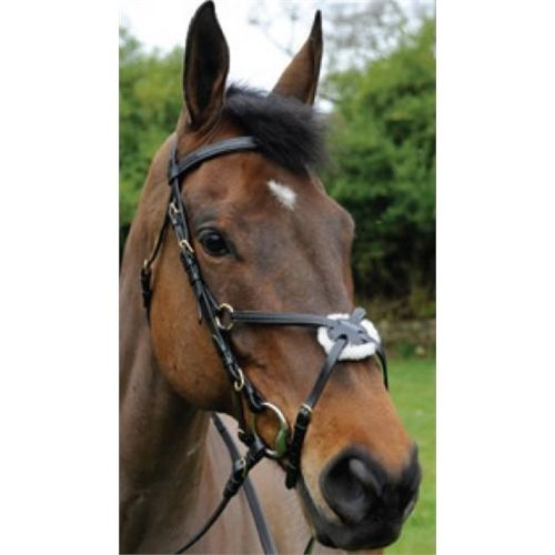 Celtic Equine Comfort Grackle Bridle