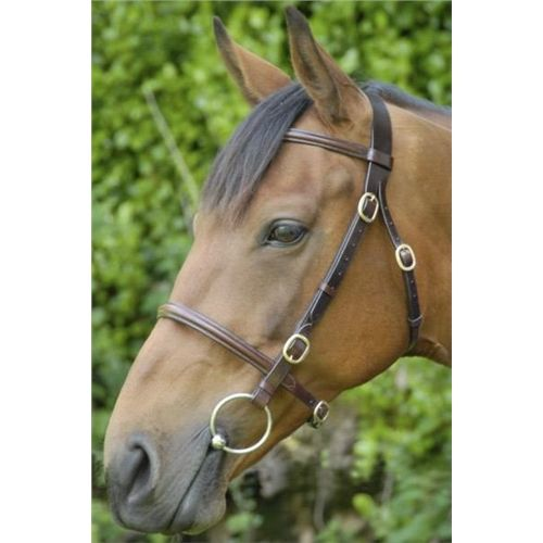 Celtic Equine Plain In-hand Bridle