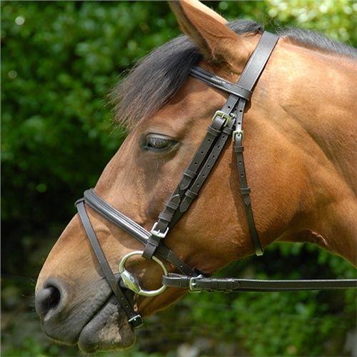 Celtic Equine Classic Bridle