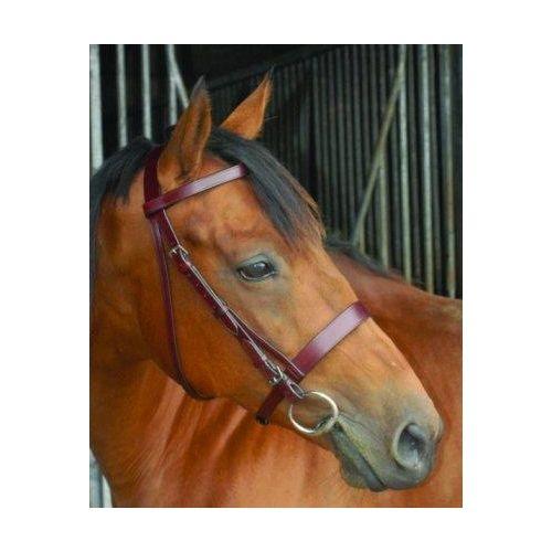 Celtic Equine Hunt Bridle