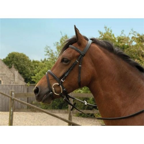 Windsor Flash Bridle
