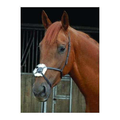 Celtic Equine Grackle Noseband