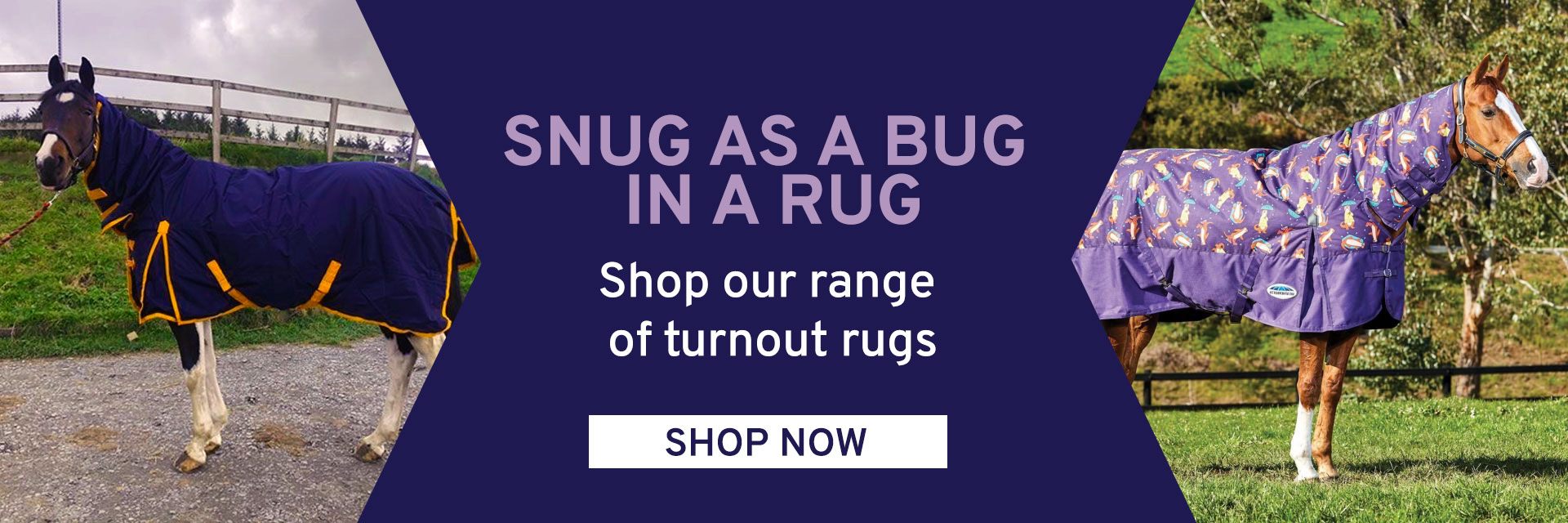 Shop our turnout rugs